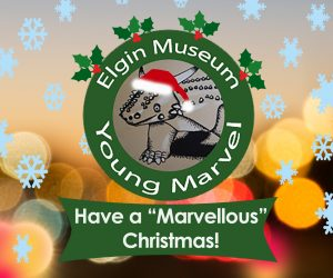 "Young Marvels Activity: ""Have a Marvellous Christmas"" @ Elgin Museum Side Hall 